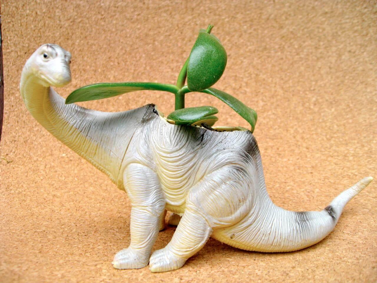Here's a plant-o-sorus