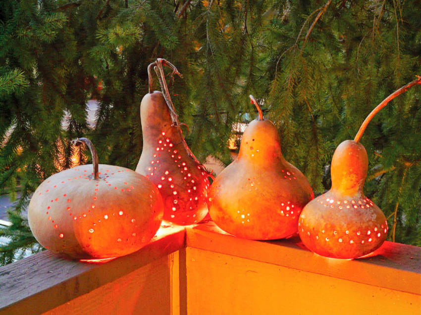 Gourd lanterns are great to set the mood for fall!
