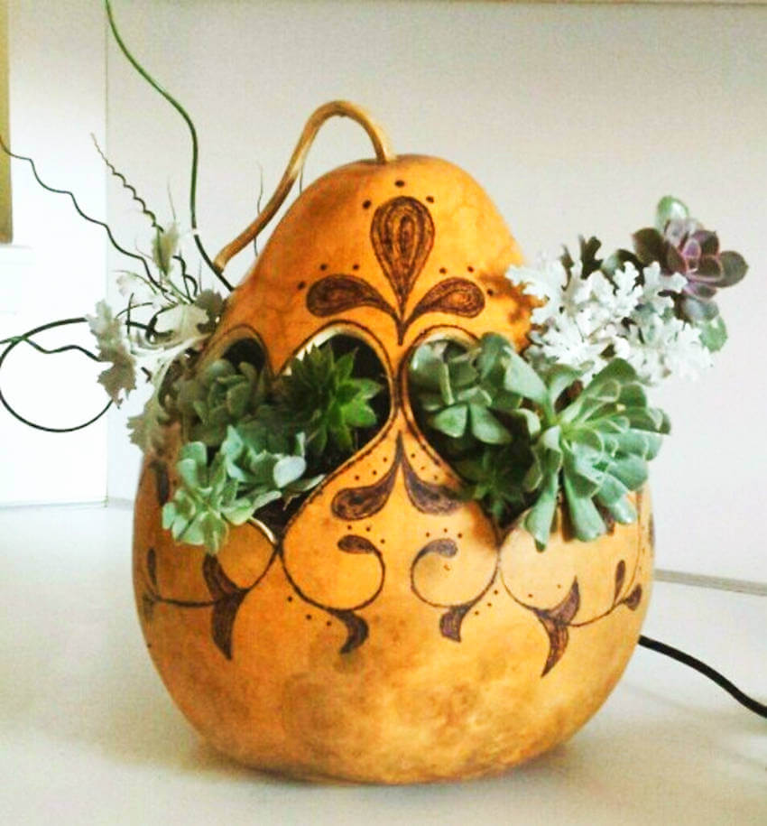 A gourd planter is so unique and beautiful!