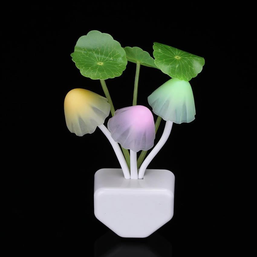 Mushroom lamp.