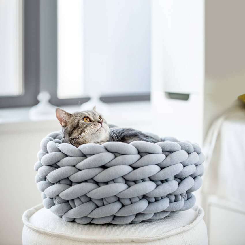 Knit the cutest place for your pet to rest.