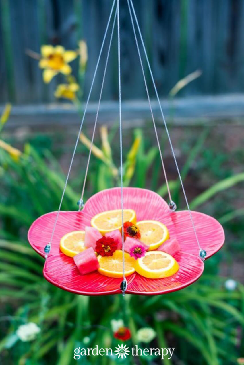 This DIY butterfly feeder is very simple to make and looks beautiful!