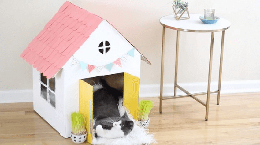 This cute house is really simple to make and kitty will love it!