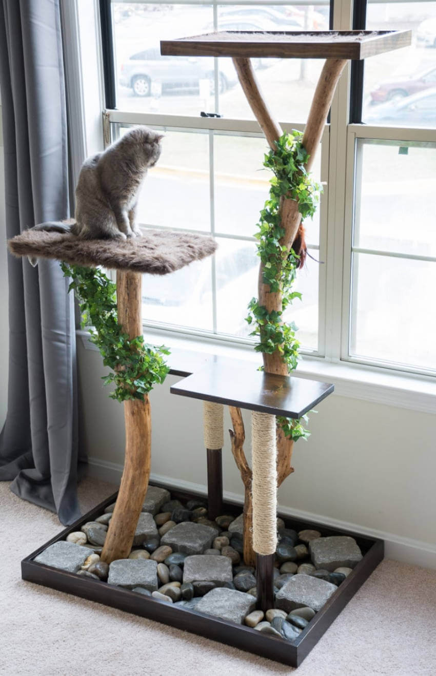 A cat tree made from real tree branches looks really unique!