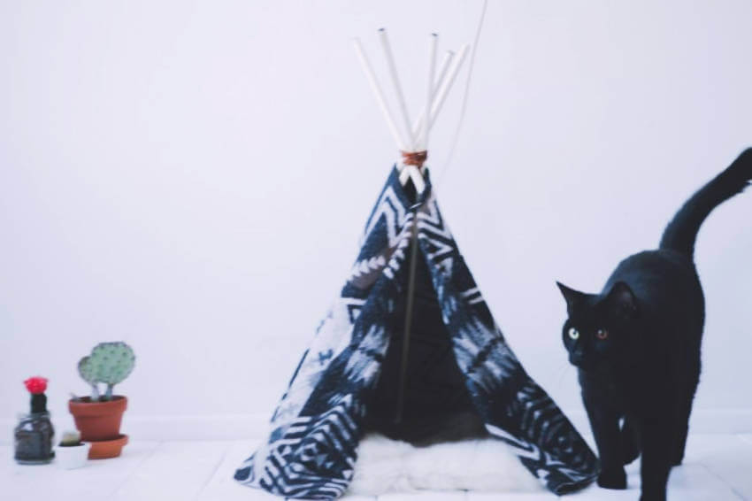 This cat tent is a lovely addition to your home!