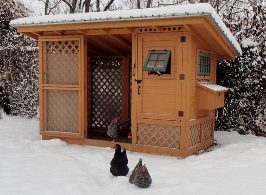 This chicken coop is super beautiful.