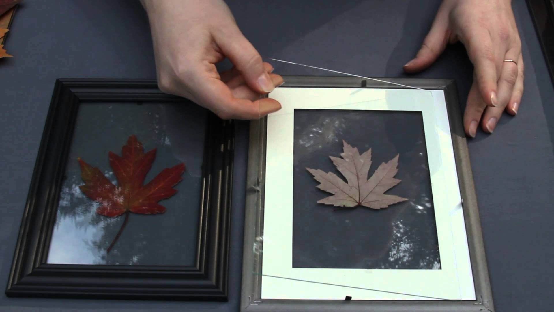 A leaf booklet wall art piece can really bring together a home