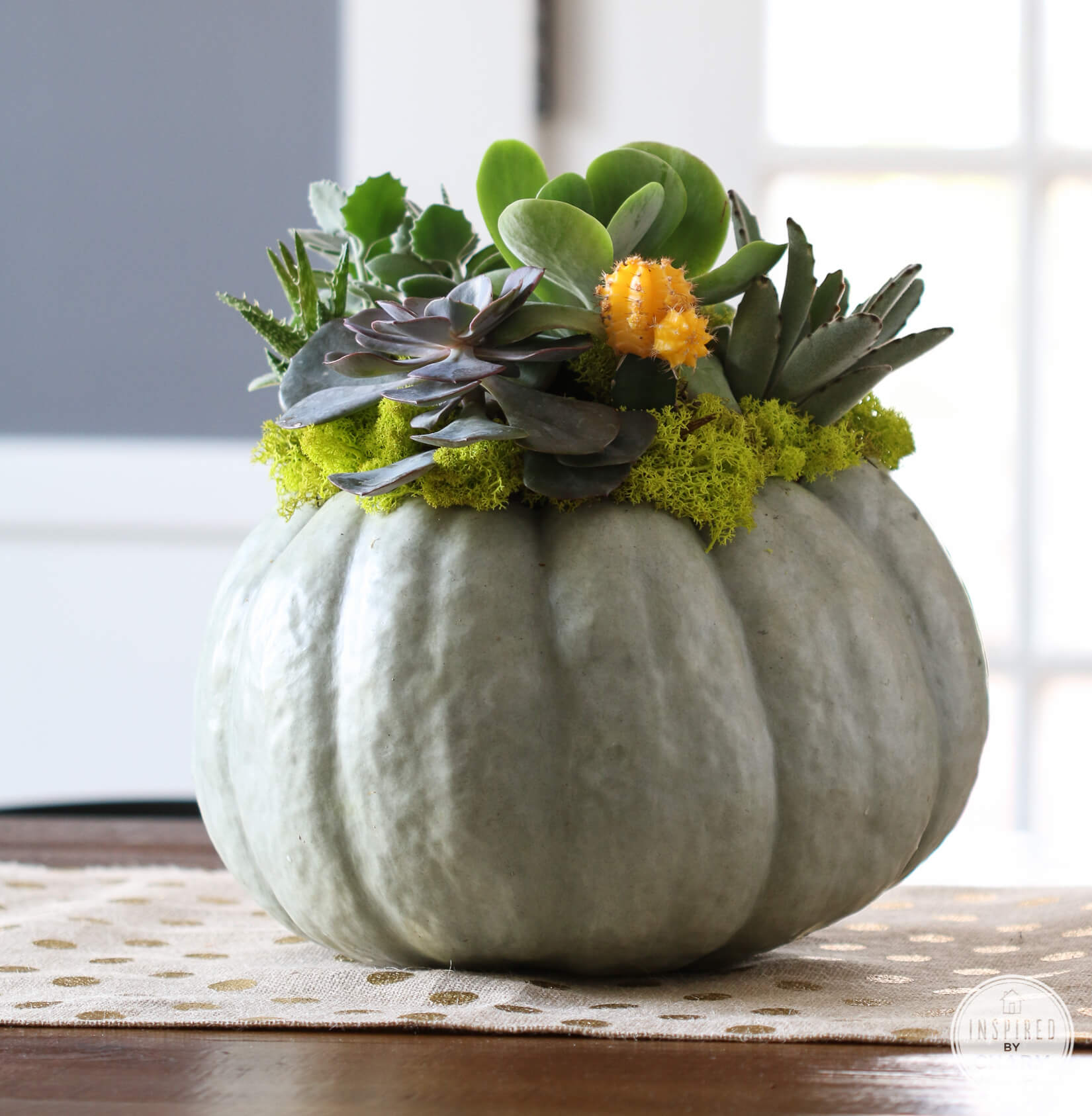 Fall inspired pumpkin succulent decor for a home interior