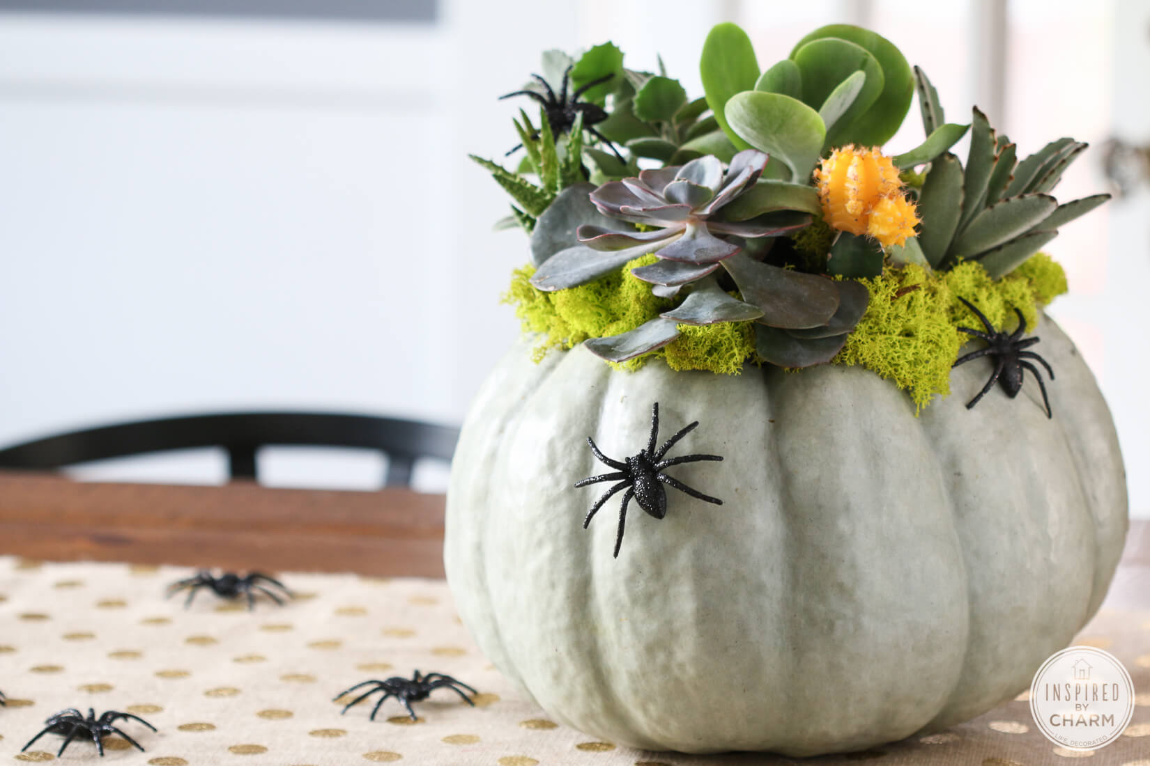 Make pumpkin themed fall decor for your home