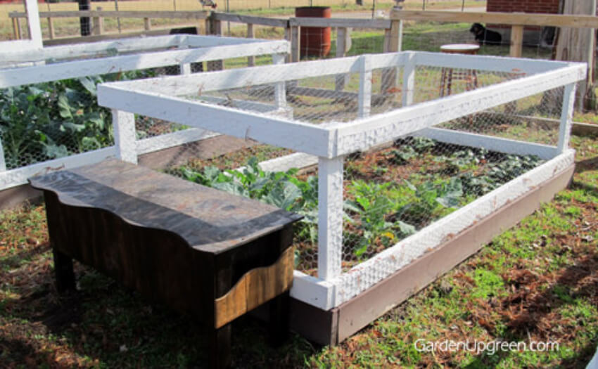 You can also adapt the quail to fit your backyard better.