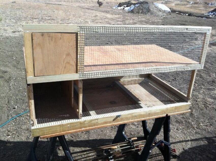 Your hutch is ready to house some quails!