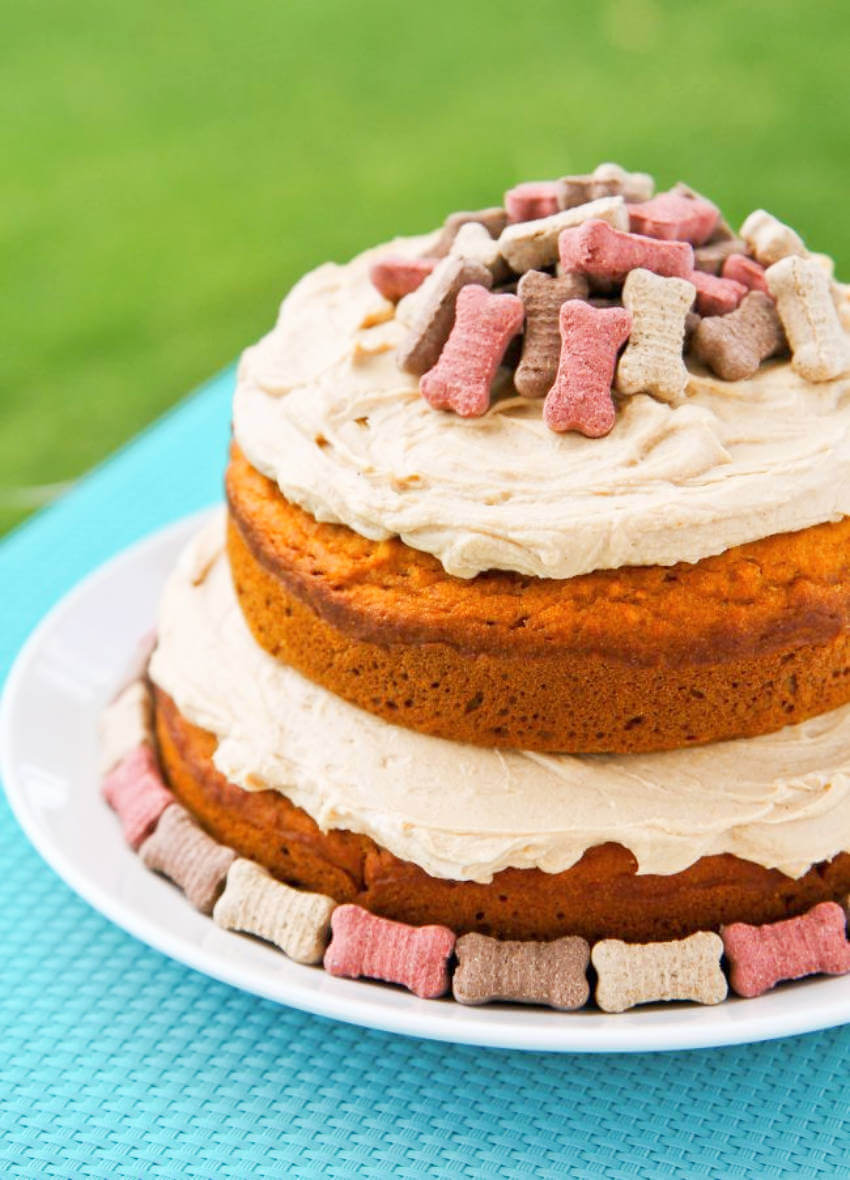 Pumpkin and apple for the best dog fall cake!