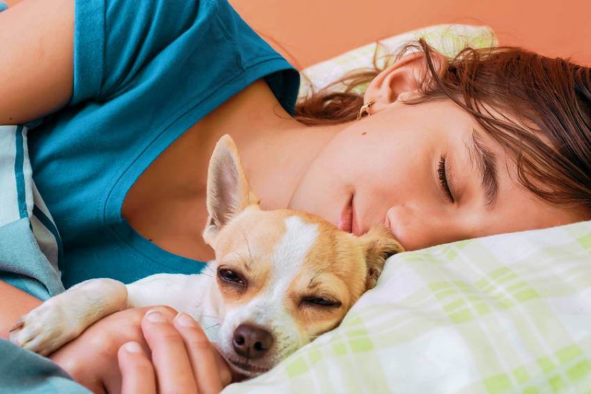 Dogs are extremely loyal and sense when we're feeling down, their unconditional love can only makes us feel better!