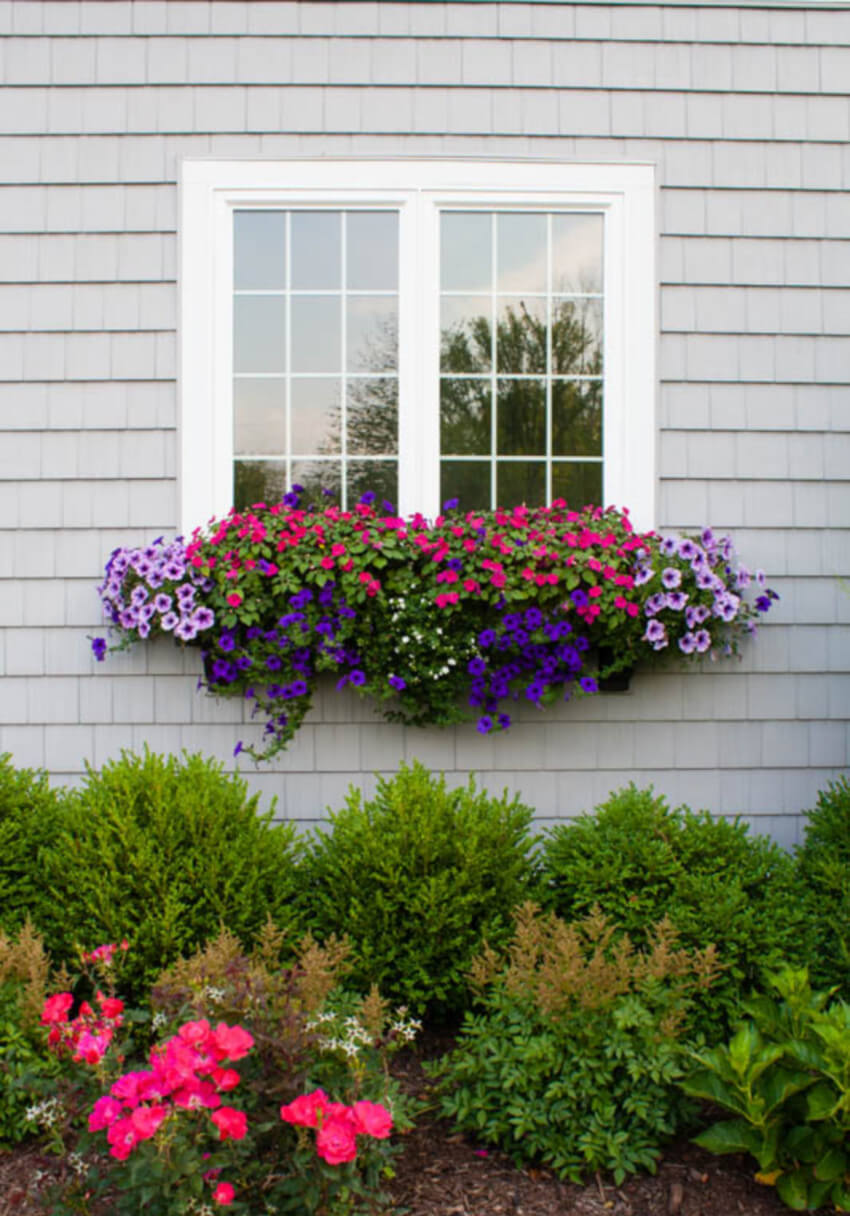 Window boxes are perfect for small gardens.