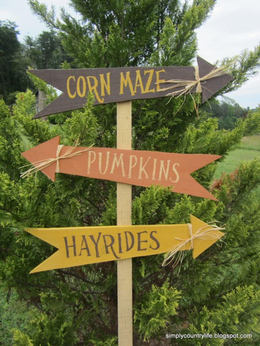 Most pumpkin farms have corn mazes and hayrides too.