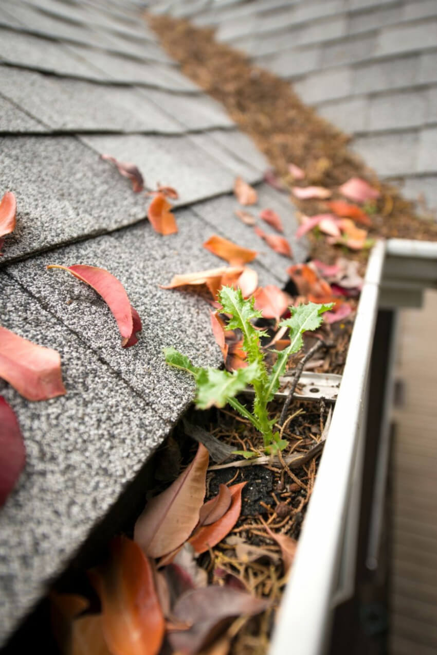 Getting the gutters clean is one of the most important tasks for fall.