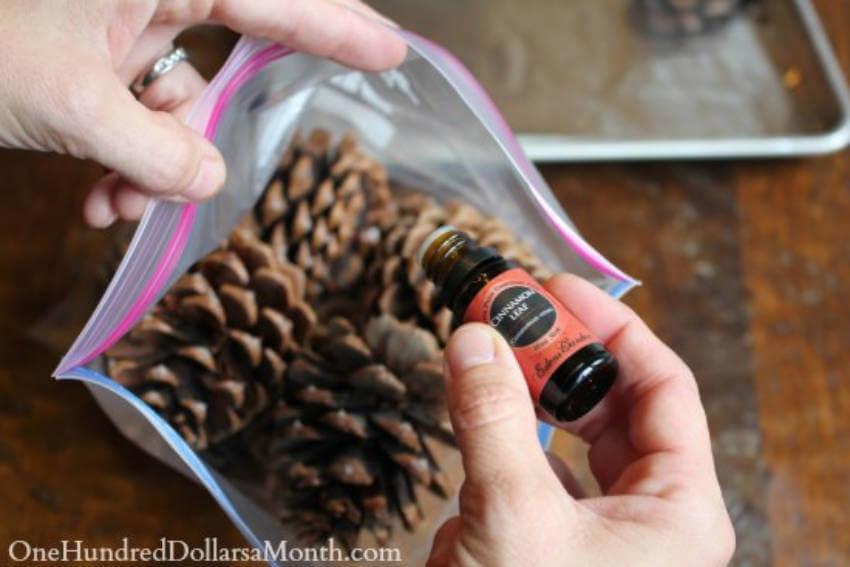 Adding a few drops of cinnamon essential oil will make the pinecone scent last a lot longer!