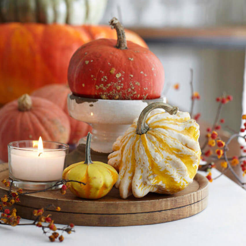 Gourds sure bring fall inside your home.