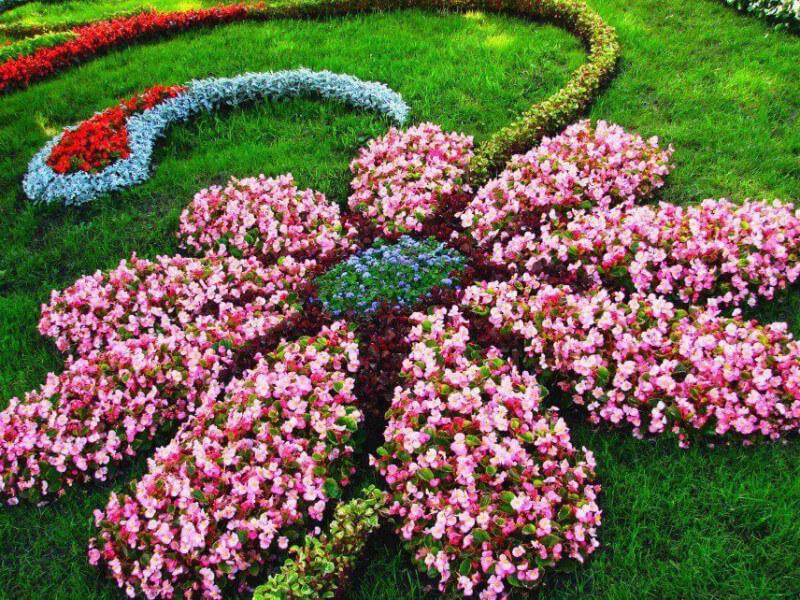 7 Flower Garden Ideas to Update Your Landscape