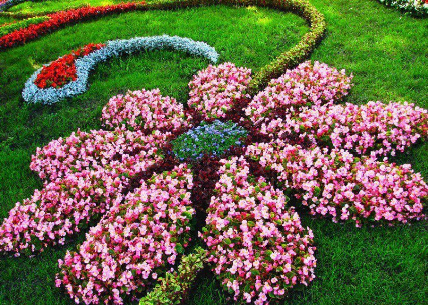 Floral design for your garden will be lovely.
