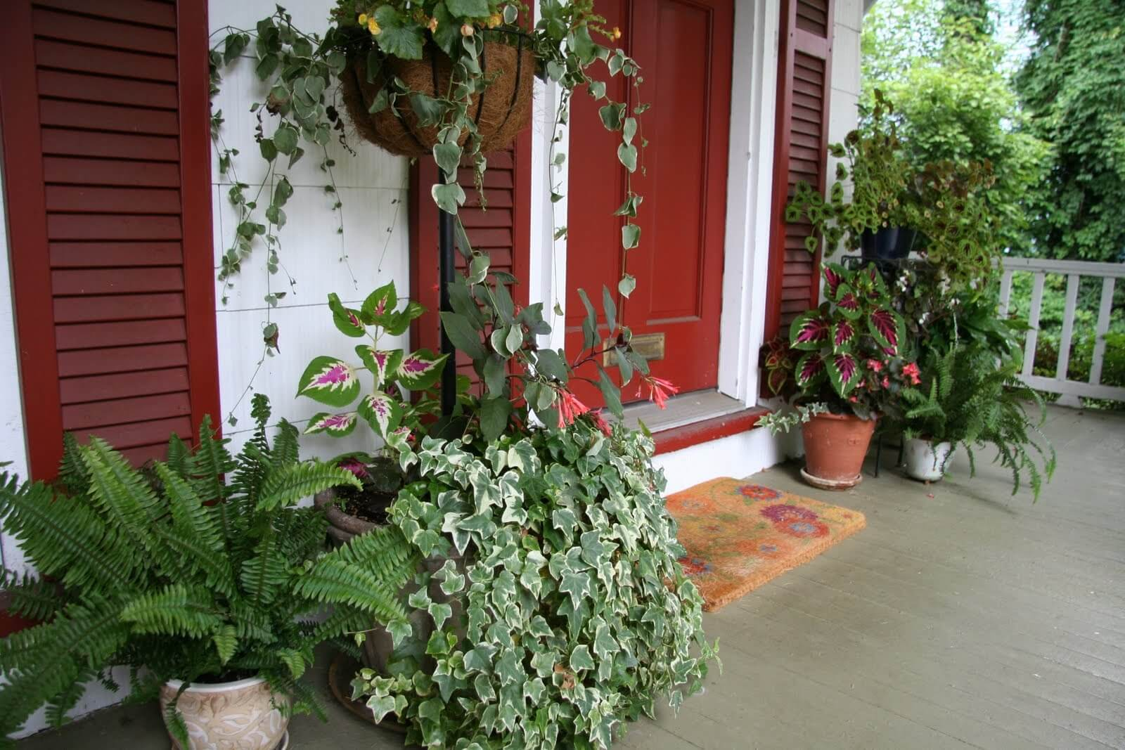 Even potted plants can make a huge difference in tone