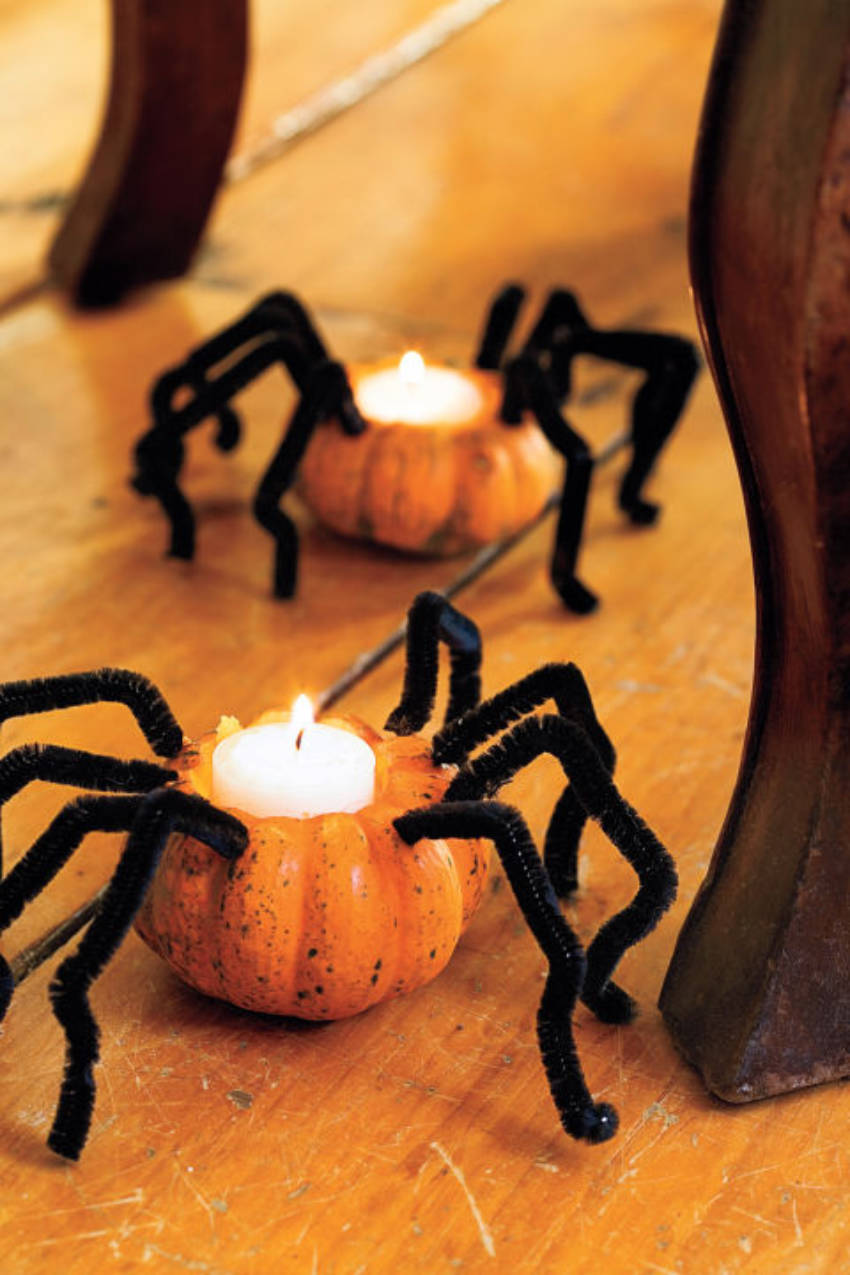 These mini pumpkins that look like spiders are the best!