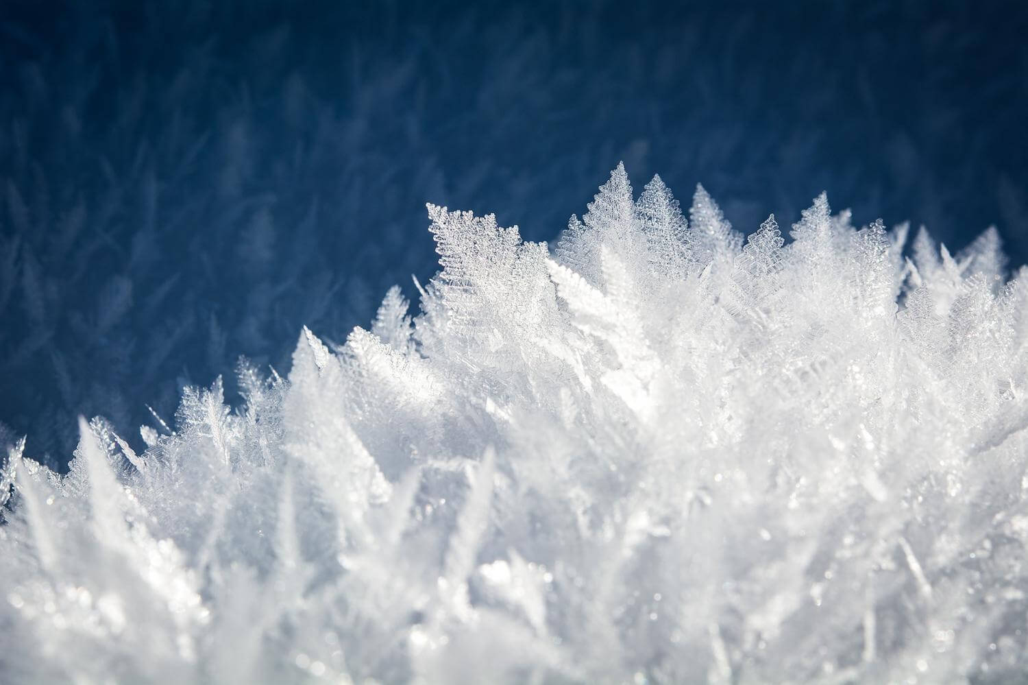 How to fight the buildup of ice on your property