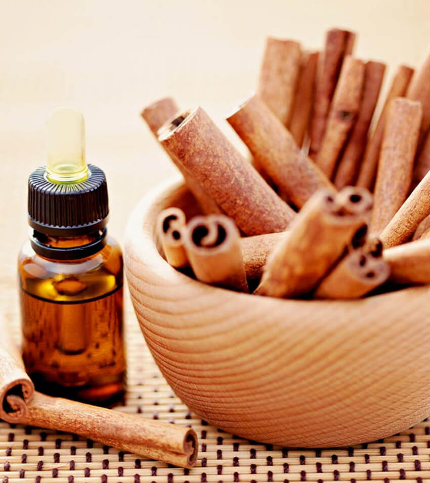 Cinnamon is a wonderful scent to keep spiders out of your house!