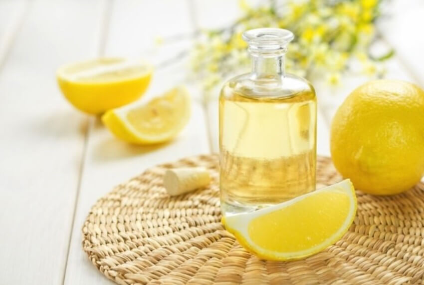 Lemon is a citrus fruit that can truly keep spiders away!