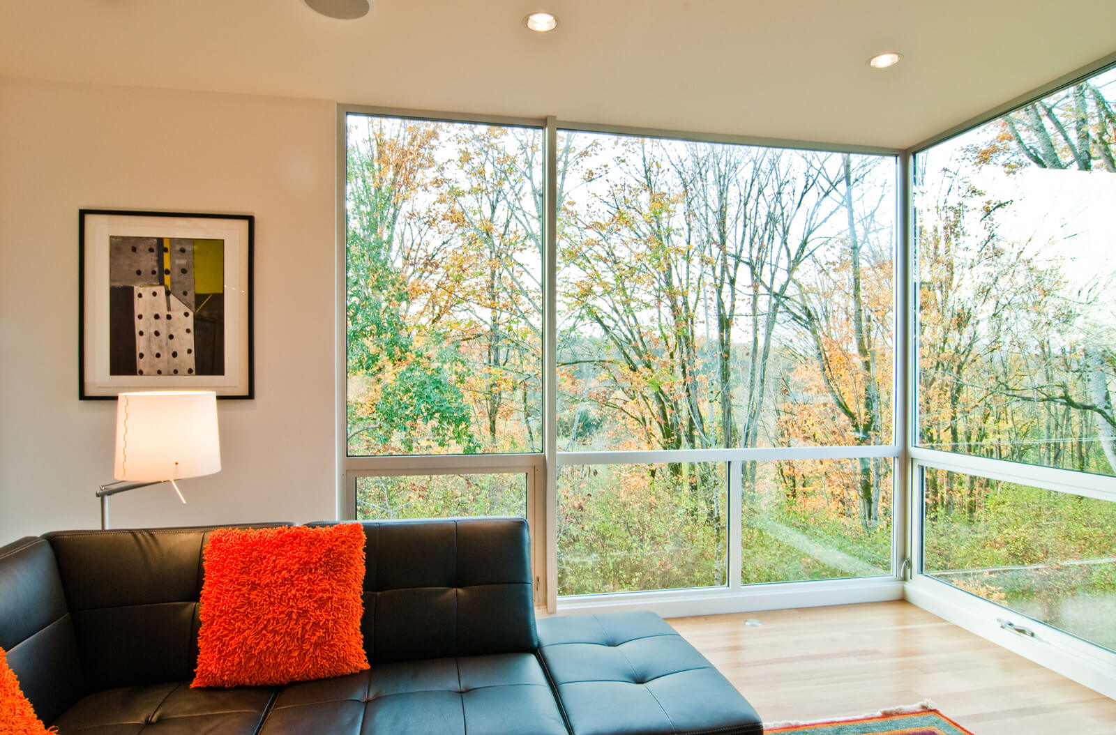 A flowery field of view from your home interior