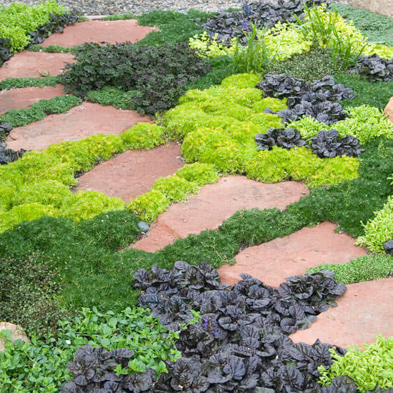 Green mossy paths open up to reveal protected grass