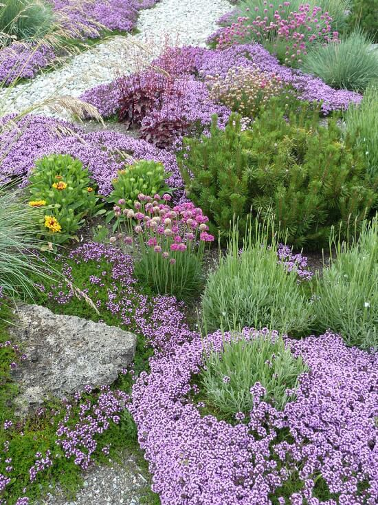 If you haven't heard of ground covers, they work exceedingly well.