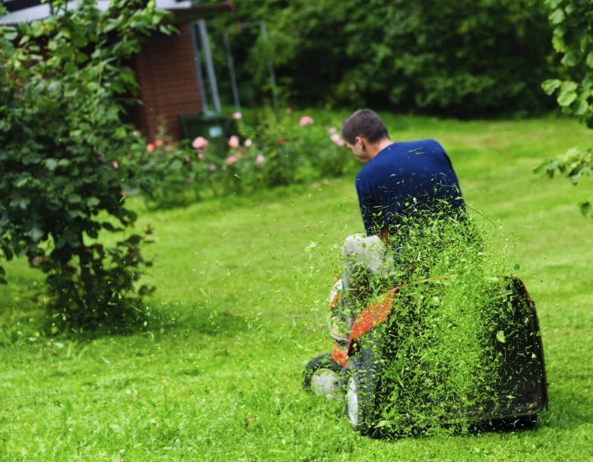 Grass clippings can become natural fertilizers!