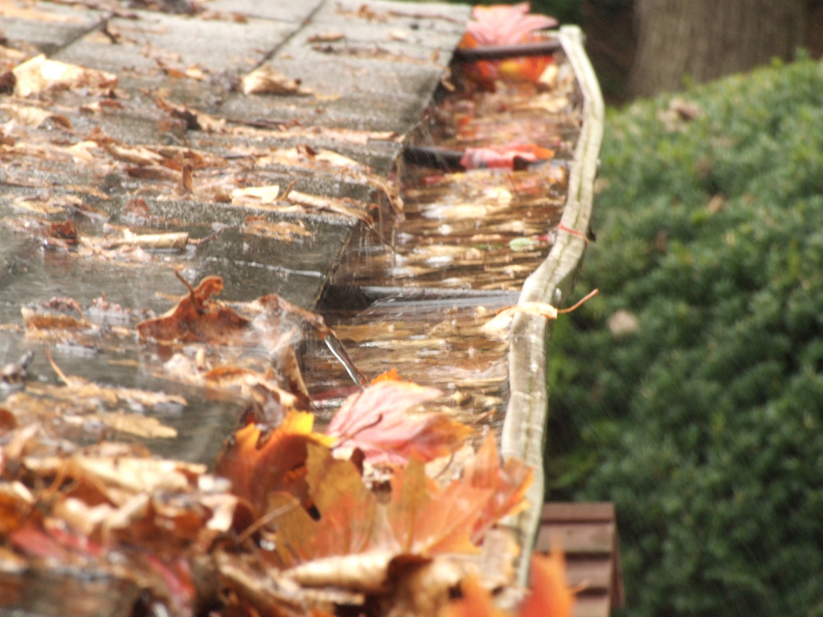 Gutter cleaning and why it's important