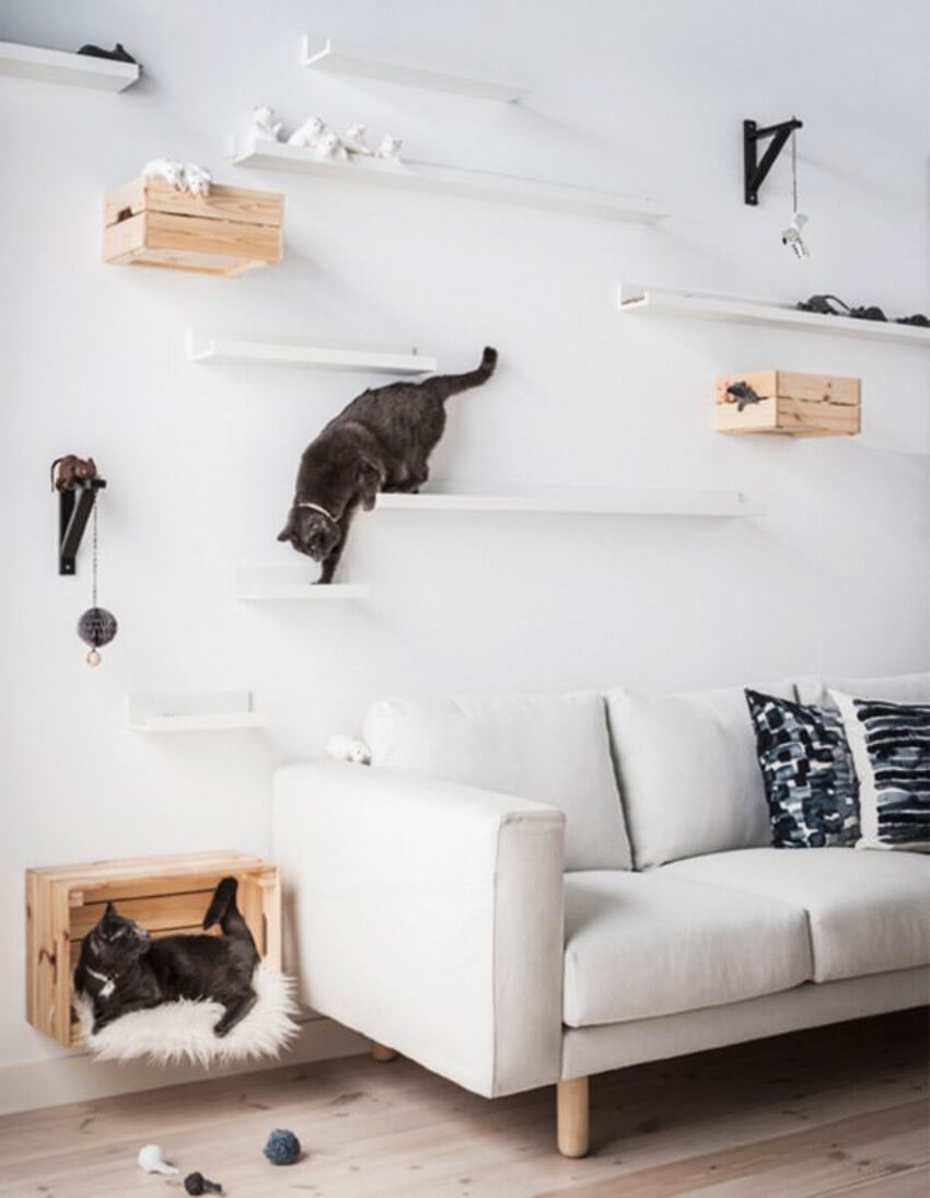 Renew your home and give your cats a place to hang out!