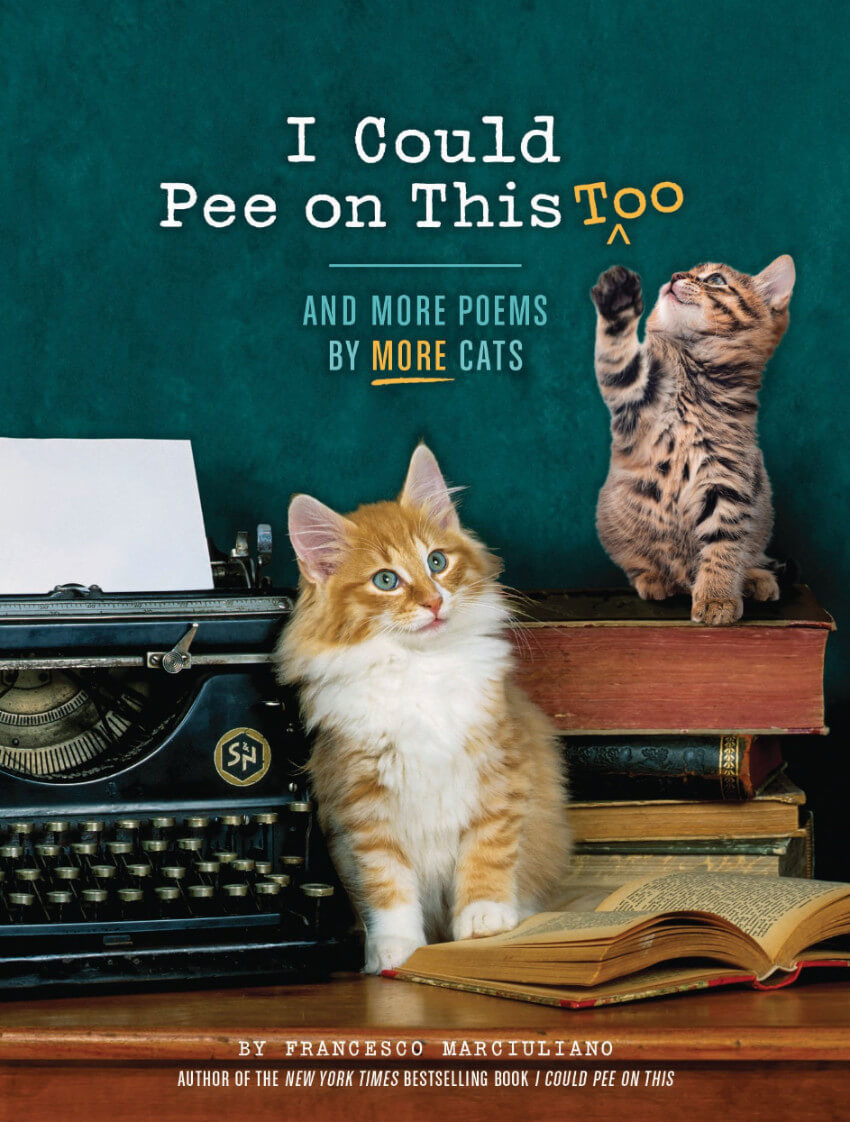 This adorable book is the perfect gift for cat owners or for those who love some funny cat stories.