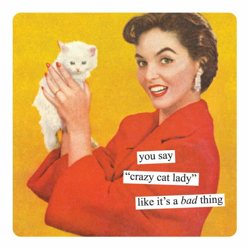 This magnet has the perfect response for those anti-cats lunatics