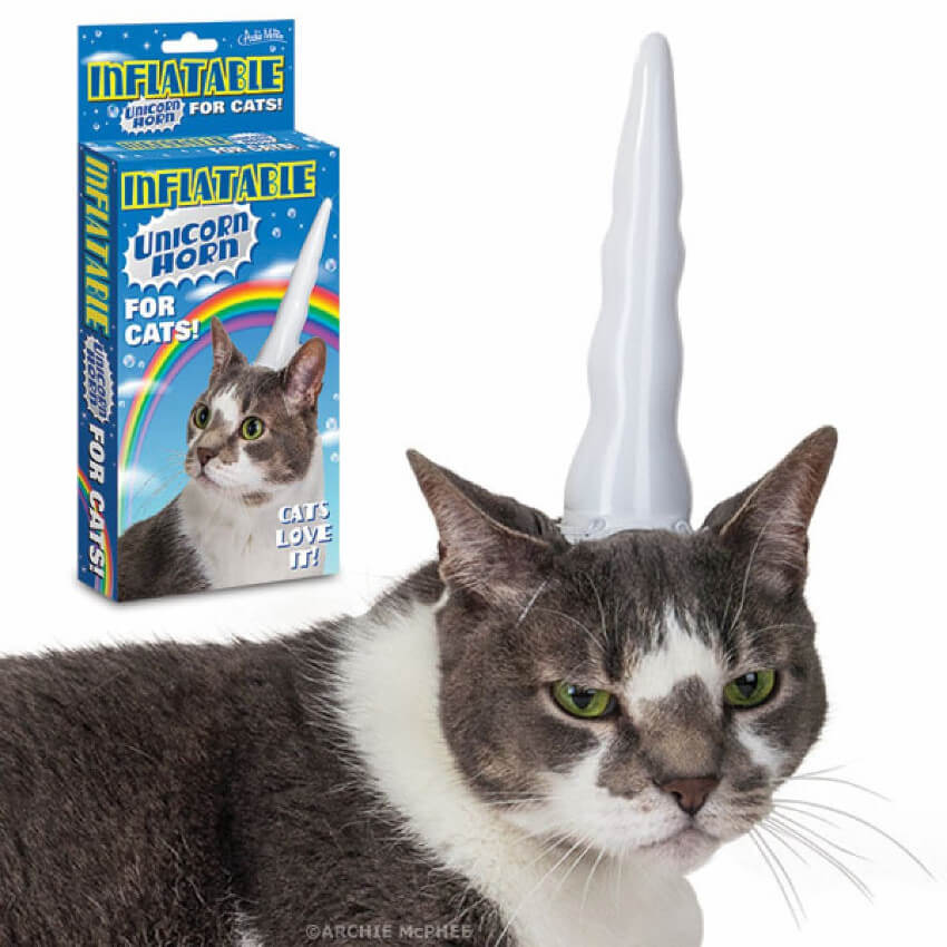This inflatable unicorn horn is something that every cat clearly needs