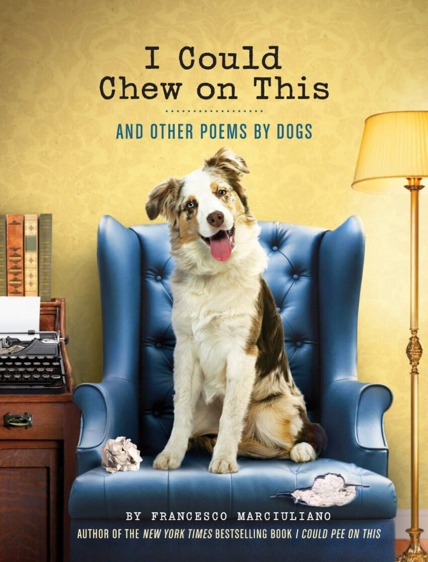 This hilarious book to leave dog-owners laughing out loud