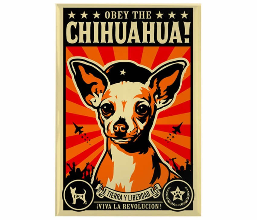 This fridge magnet because we all know the chihuahua is planning world domination