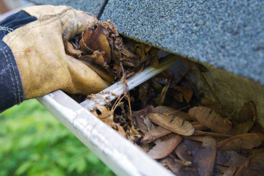 Make sure gutters and downspouts are clean to prevent clogging from snow.