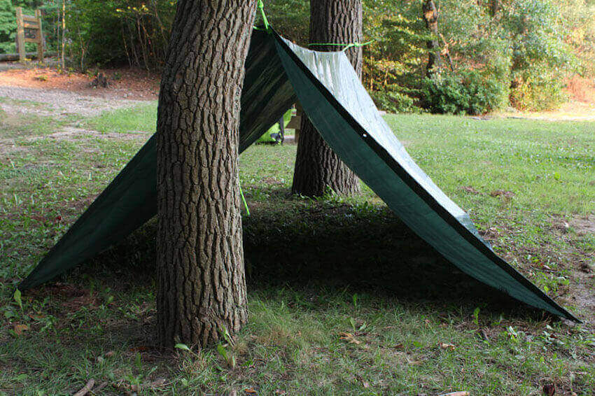 Landscape design: If you can't afford a dog house (or don't have the skills or tools to build one) you can easily make a tarp shelter to provide your pet with a shady spot.