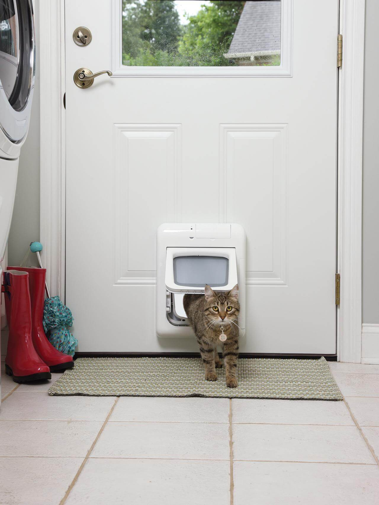 Even the cat can benefit from a similar door.