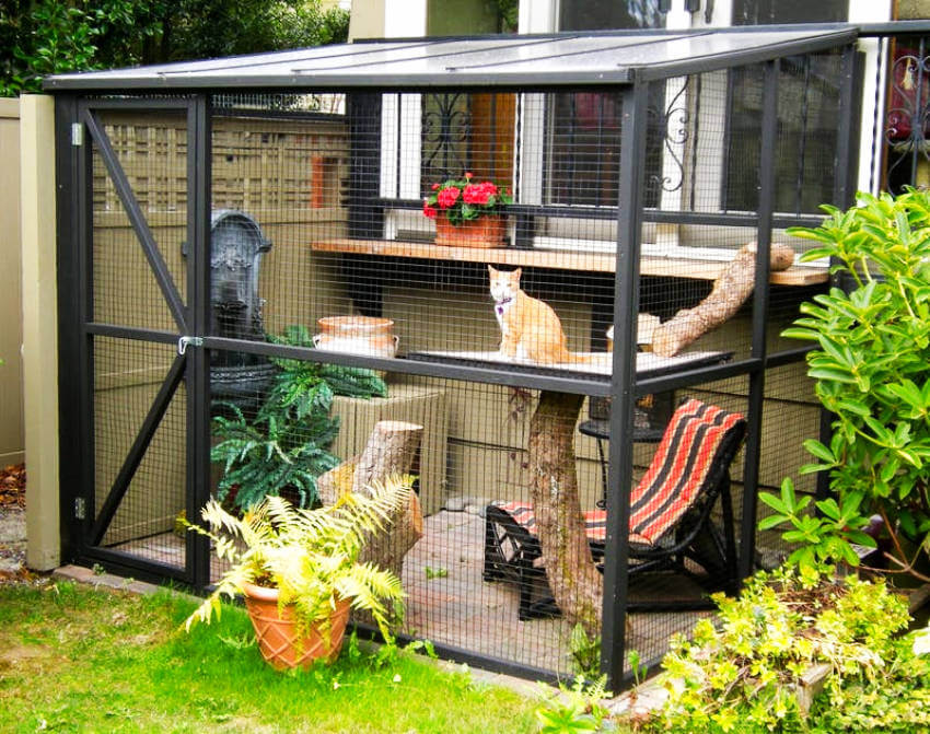 A place for your cat to hang out and you can enjoy the time along with it!