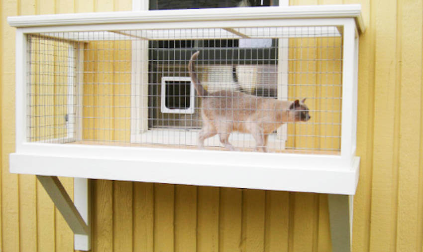 A simple catio window box can already help out a lot!