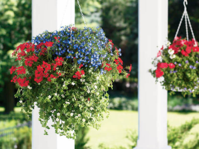 Simple Landscape Accents That Will Beautify Your Garden