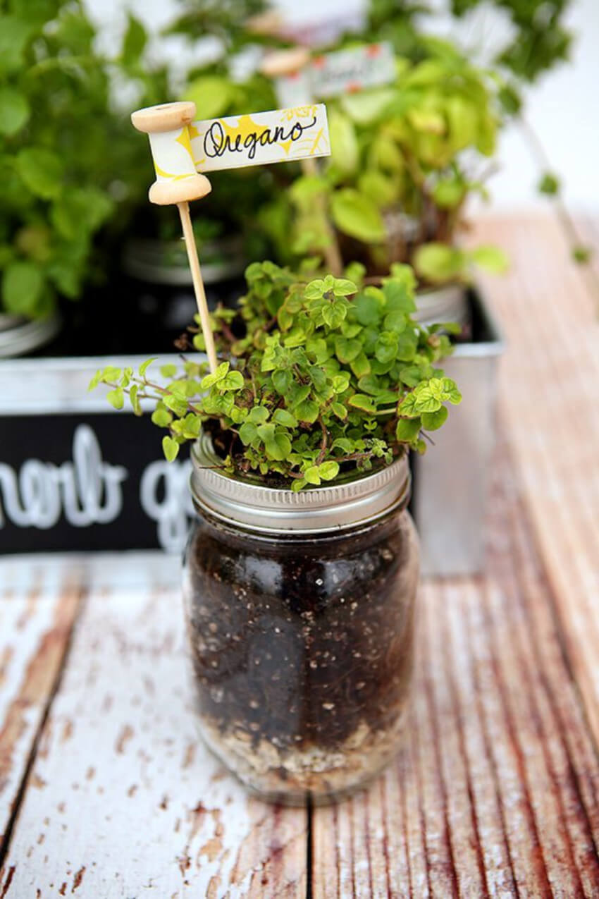These will look adorable in the middle of a herb garden.