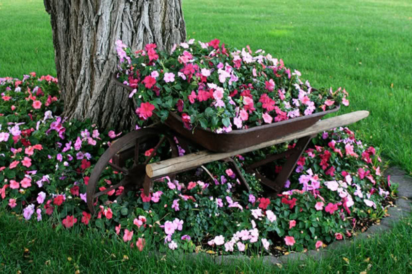 Vintage wheelbarrow with a flower bed on top, looks gorgeous!