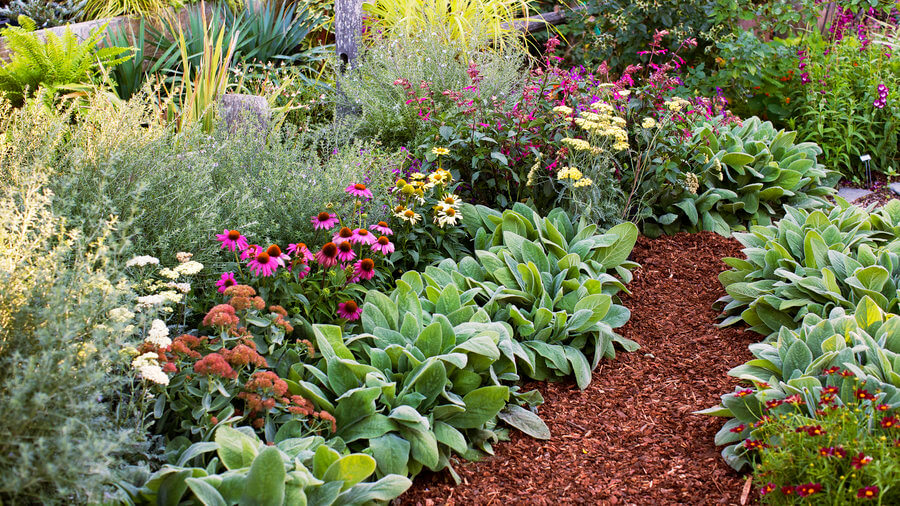 Flower beds don't have to be a lot of work