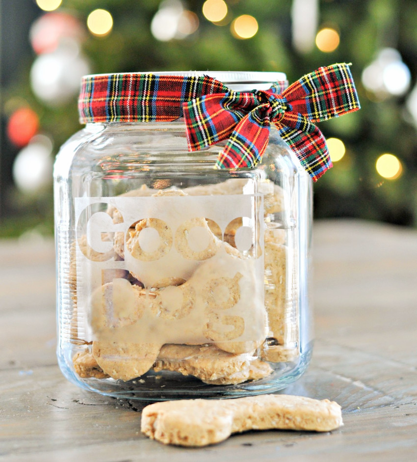 Dog treats and a cute label on the jar can be a cool gift!